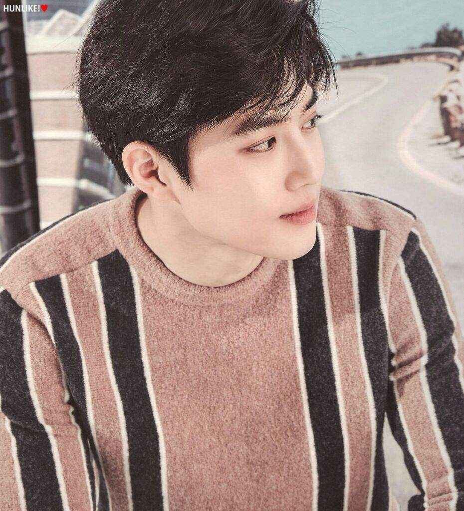 SUHO 2017 SEASONS GREETINGS