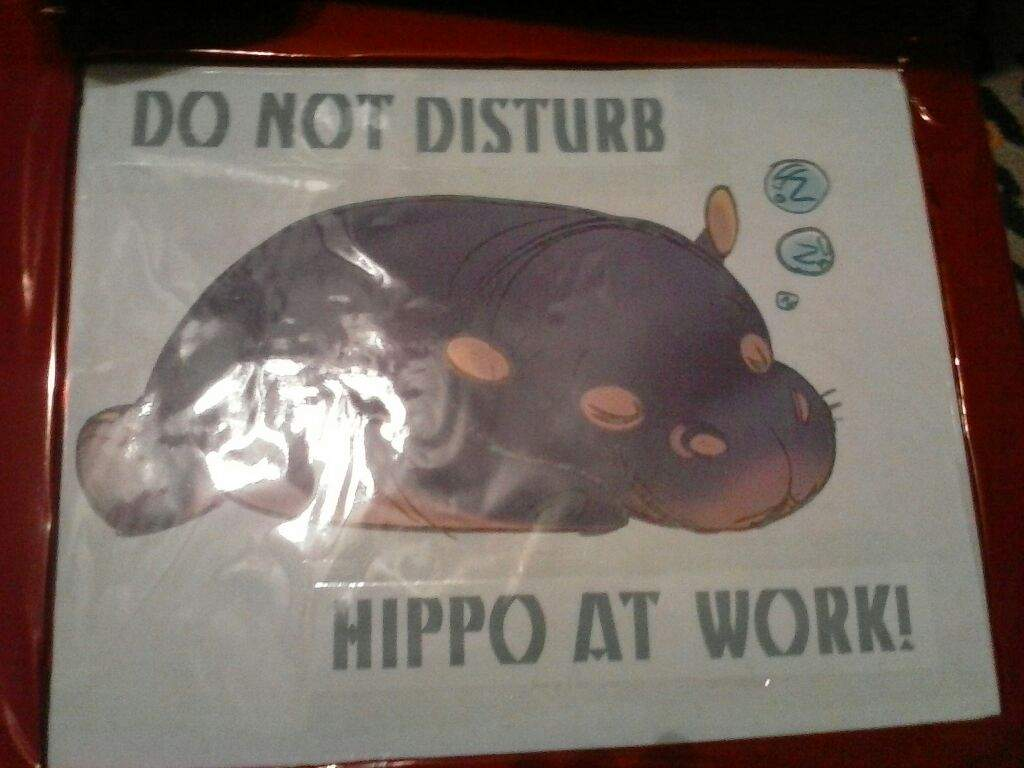 So I Thought For Her 20th Bday Ill Make A Sleeping Hippo Didnt Draw It And Put Do Not Disturb At Work