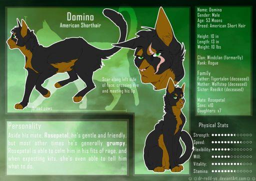 Domino (claw) | Wiki | Warriors Amino
