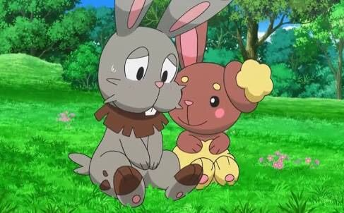 Buneary And Bunnelby Related Pokémon Amino