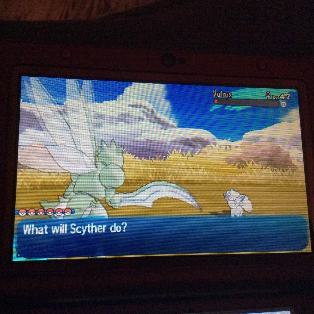 how to catch vanillite pokemon sun moon