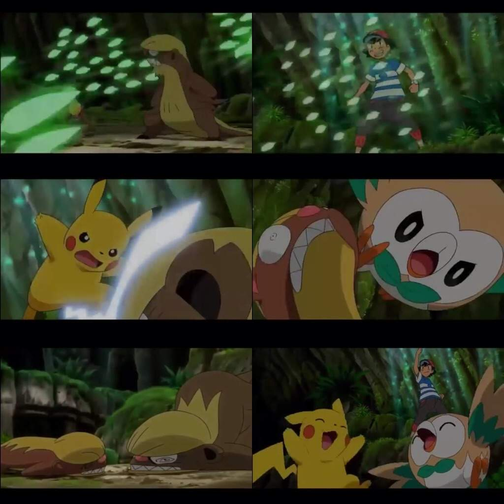 Rowlet Saved Both With Leafage