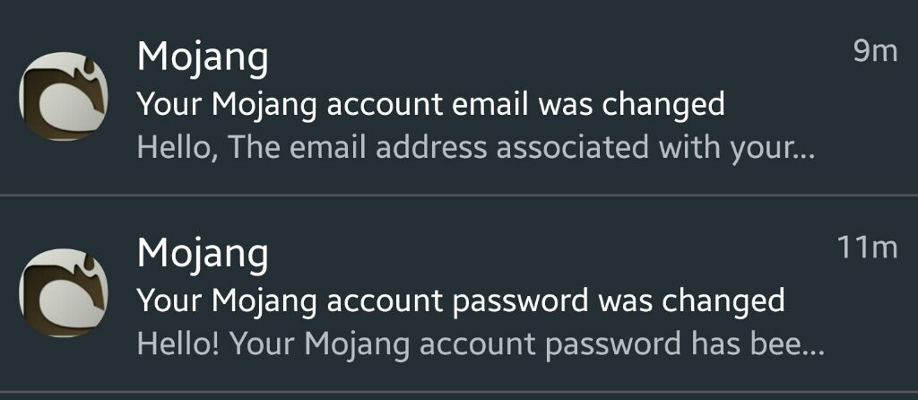 Someone tried to hack my Minecraft   &