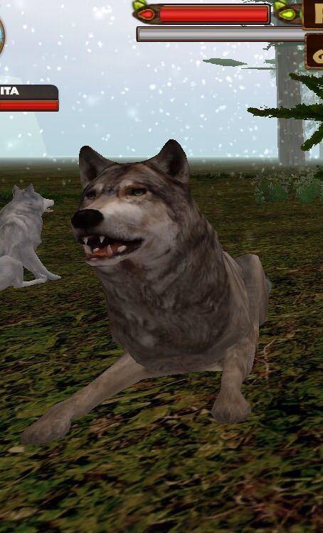 Ultimate Wolf Simulator on the App Store | Wolf Amino Amino