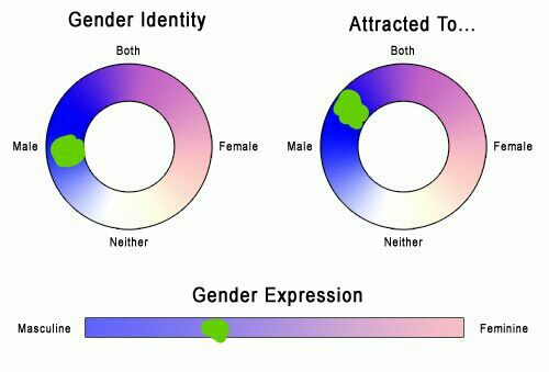 Gender sexuality chart
