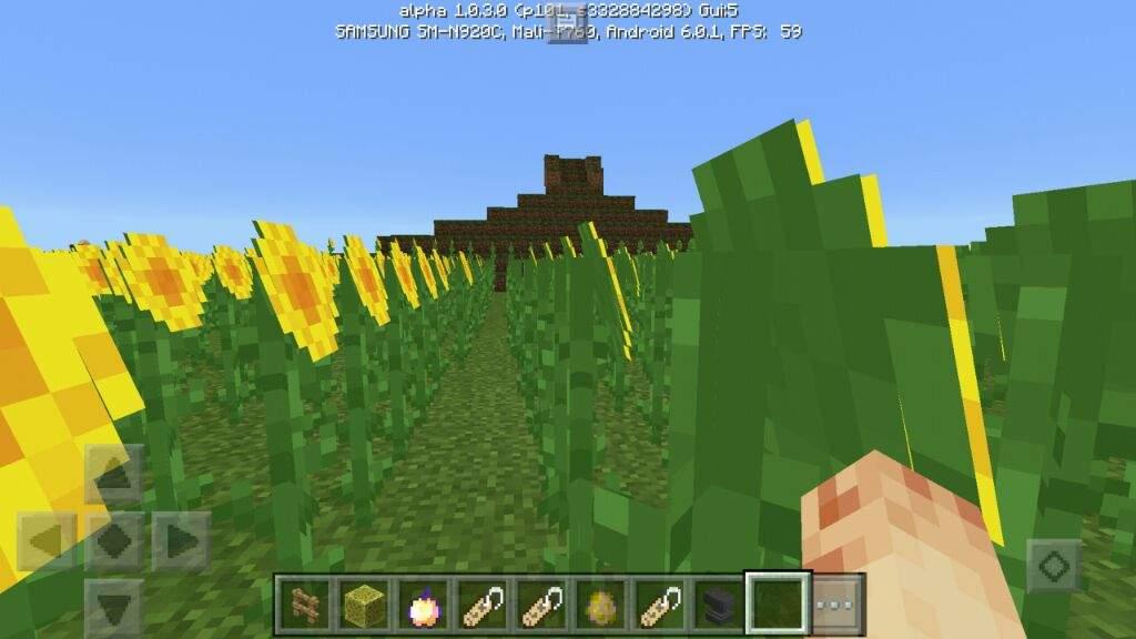 Sunflower fields on mine craft  | EarthBound Amino