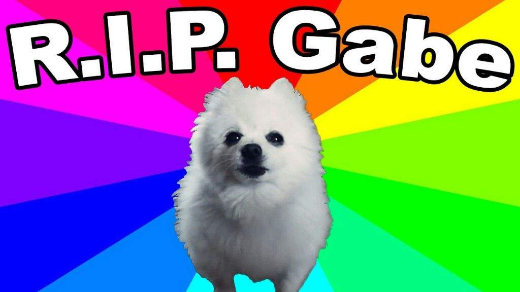 When Is Gabe The Dog S B Day