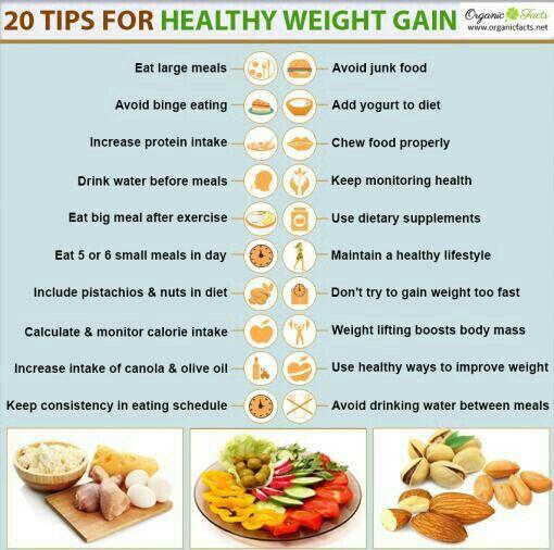 Weight Gain Tips Wiki Fitness Amino