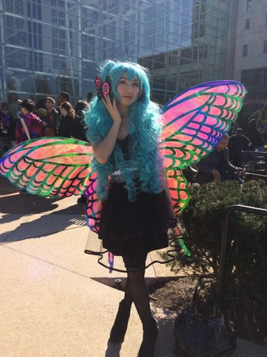 Tutorial Cellophane Fairy Butterfly Wings And Harness