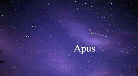 Apus (Constellation)   Space Amino