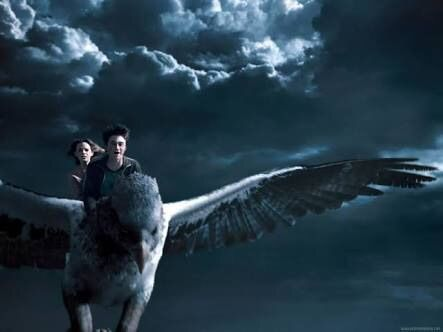 During The Battle Of Hogwarts Buckbeak Along With Several Thestrals Was Seen Attacking Lord Voldemorts Giant Soldiers From Air While Grawp