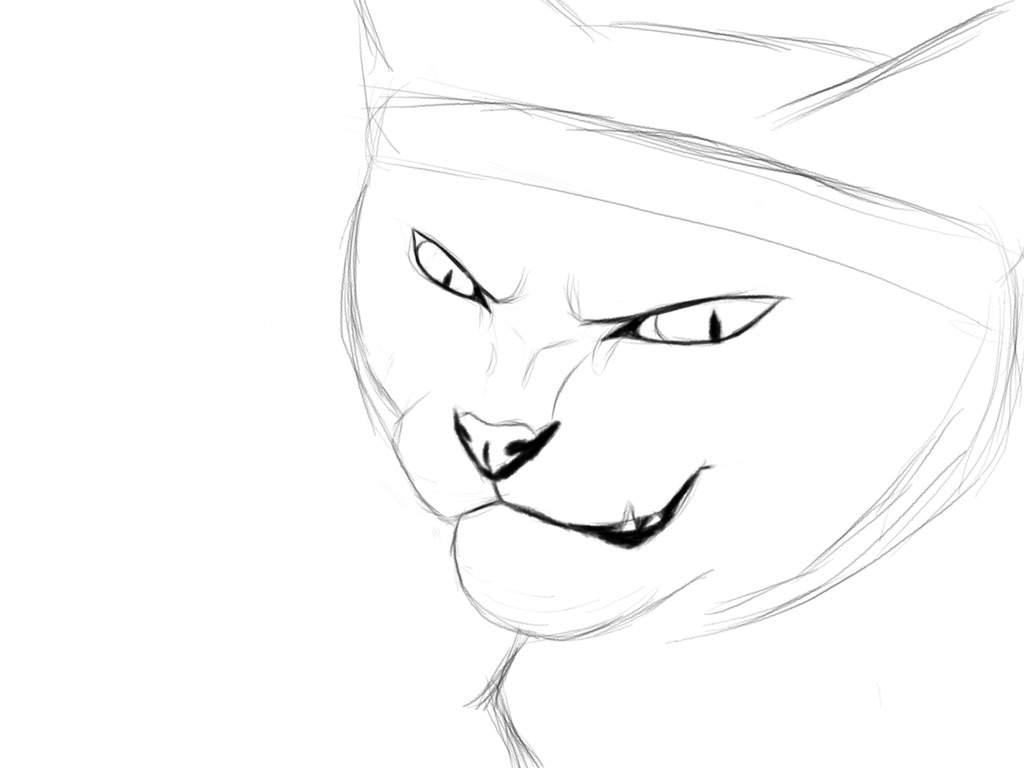 Art Tutorial Cat Eyes Warriors Amino