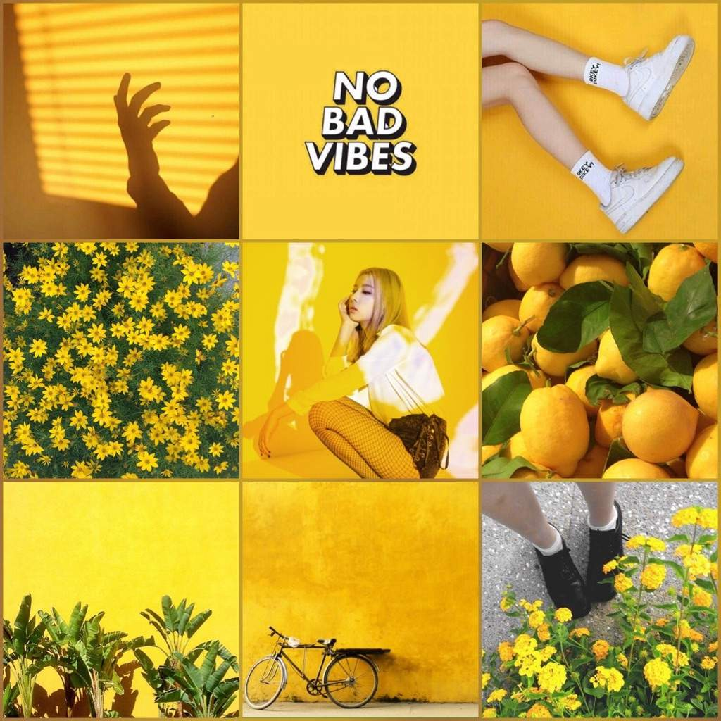 Yellow Mood jiwoo moodboard 🍋 | hidden k♤rd amino