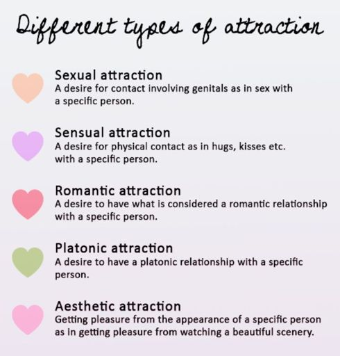 Types of Attraction | Wiki | Ace Alliance Amino