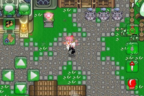 GOT THE WARP RING | Graal Classic Animo Amino