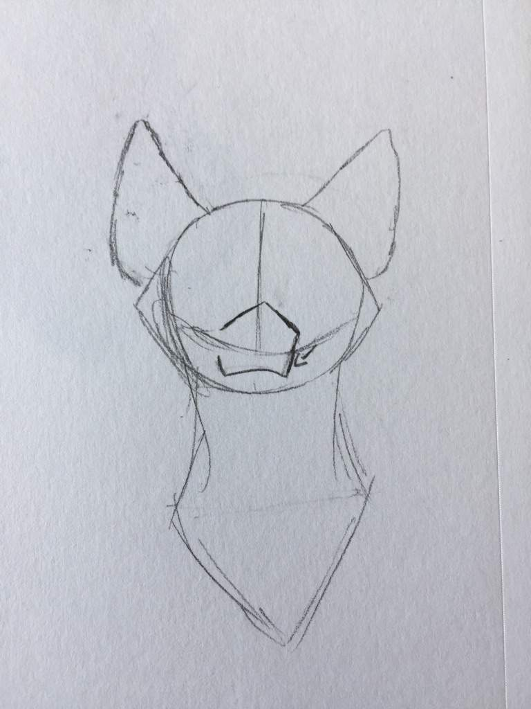 Draw Farther Down And Connect It To A Curved Line How To Draw A Cartoon  Wolf