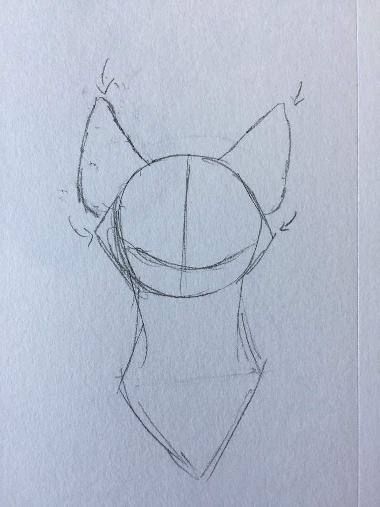 Add A Couple Of Triangles To The Sides Of The Face And Add Ears Make Sure  They Point Out