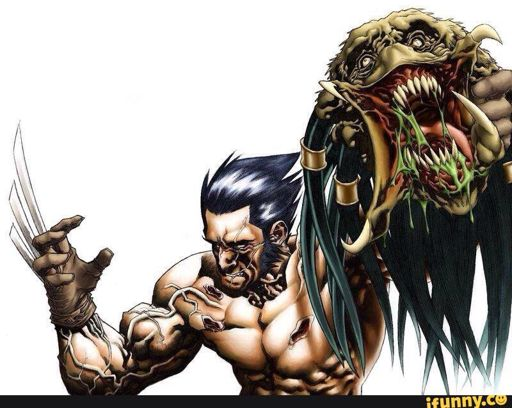 Predator | Wiki | Mutant And Proud Amino