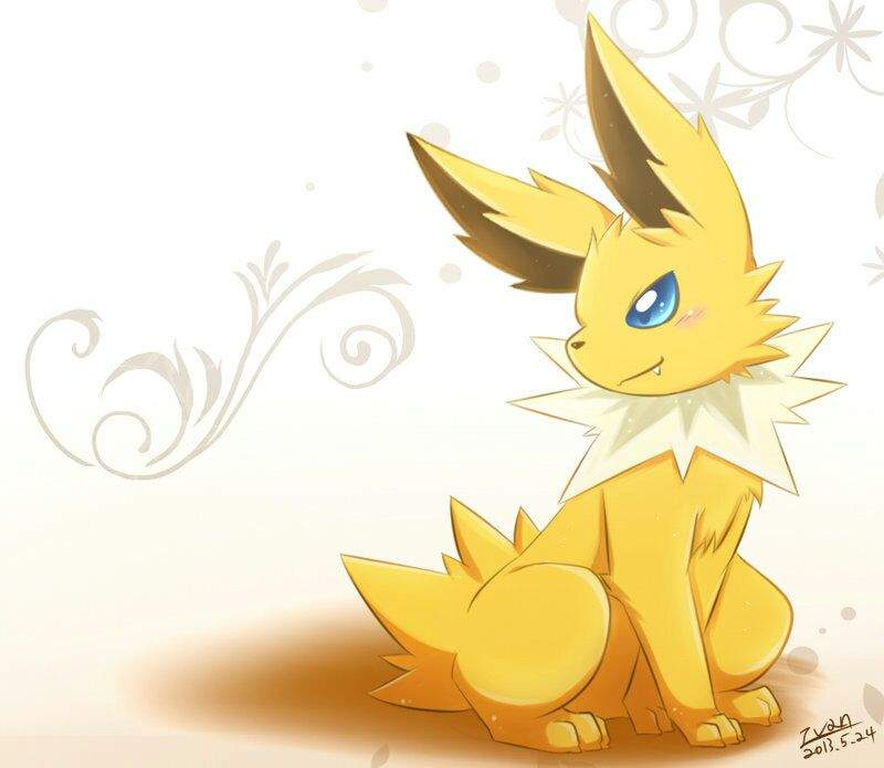 August the Jolteon  Pokmon Amino