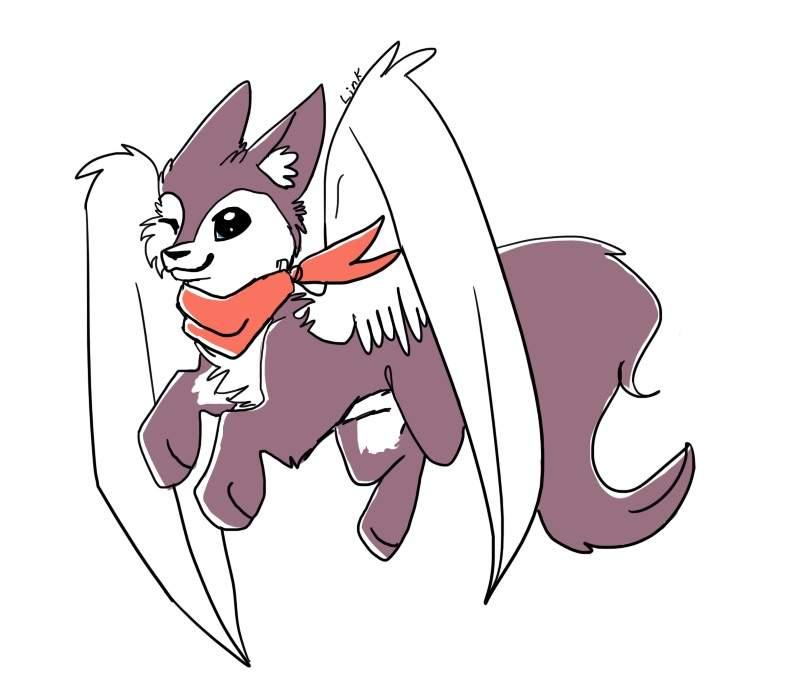 Animal jam coyote drawing   AJ Amino Amino