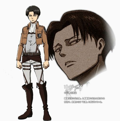 Levi Ackerman Wiki Attack On Titan Amino