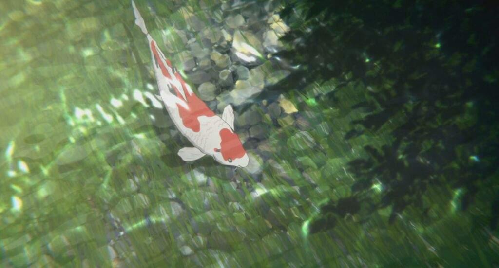 Koe no katachi review anime amino for Pond fish wanted