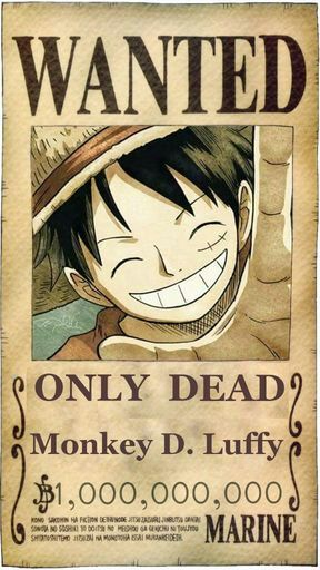 Luffy wanted only dead day 9 one piece amino - One piece wanted luffy ...
