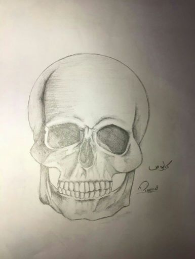 رسم جمجمة Learn To Draw Skull Flower Youtube 0