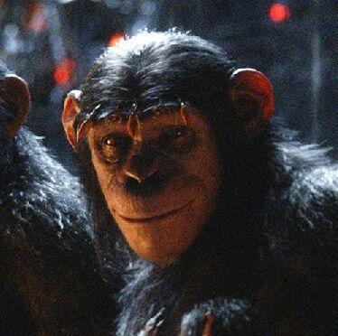 Cornelia | Wiki | Planet of the Apes Amino