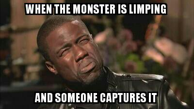 Meme Monday Monster Hunter Amino