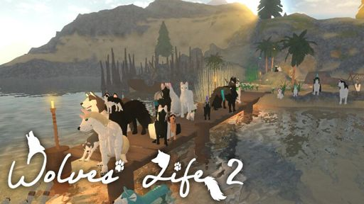 Wolves Life Understanding Wolves Roblox Amino