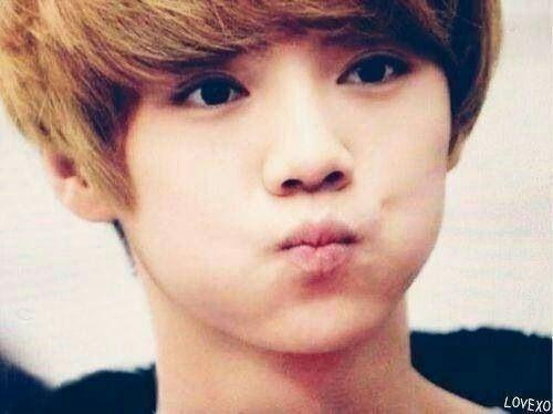 Image of: Hunhan Amino Apps Cute Luhan Exo 엑소 Amino