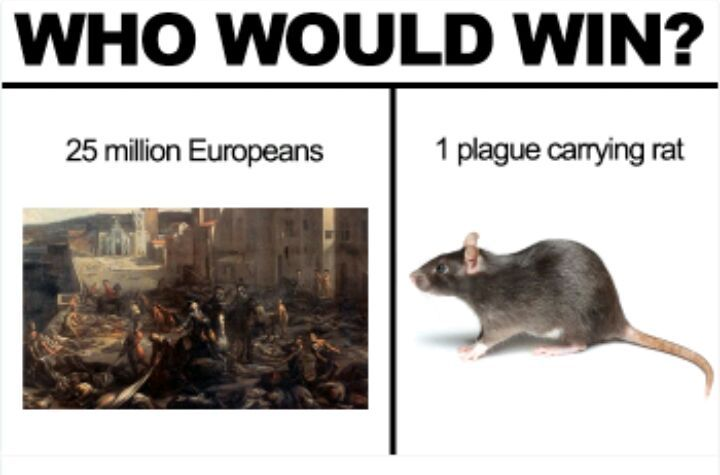 Who would win ...? | Normie Memes Amino