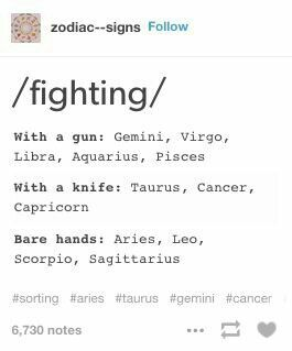 leo vs virgo fight