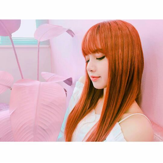 Blackpink Lisa IG Update♡