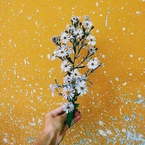 pack de aesthetic amarillo 💛  • recursos amino • amino