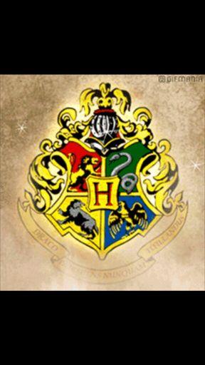 Oc Template Wiki Harry Potter Roleplay Amino Amino