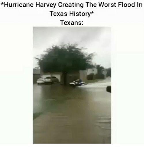 87191fdb724dfd67d69a4732ef3445aa630c61fd_00 hurricane harvey memes normie memes amino