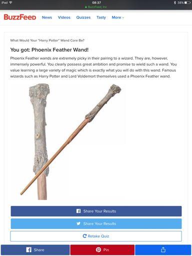 My Wand | Wiki | Harry Potter Amino