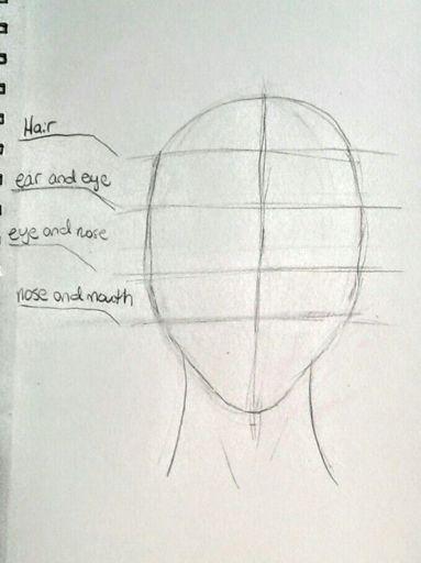 Kind Of Realistic Link Drawing Zelda Amino