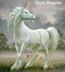 قصة الحصان ذو القرن الواحد 11