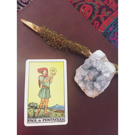 Daily Tarot: Page of Pentacles | Pagans & Witches Amino