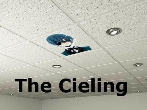 Afbeeldingsresultaat voor the ceiling black butler