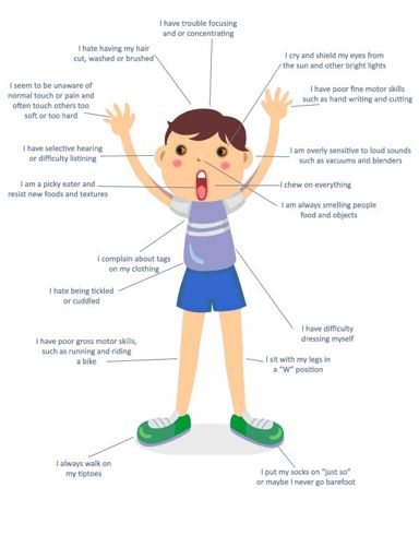 Is Sensory Processing Disorder Real >> Sensory Processing Disorder Spd Wiki Service Dogs Amino