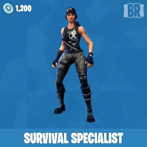 none - fortnite survival specialist