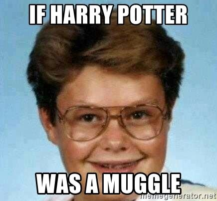 meme harry What if potter