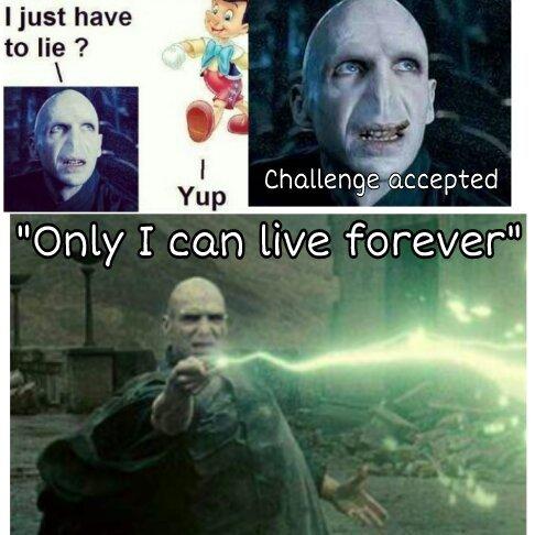 Voldemort Meme Harry Potter Amino