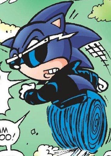 Scourge The Hedgehog Wiki Sonic The Hedgehog Amino