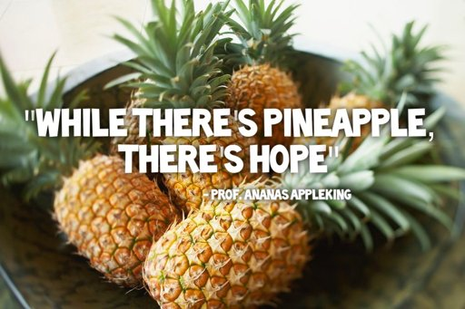 Pineapple Quotes | PINEAPPLES Amino