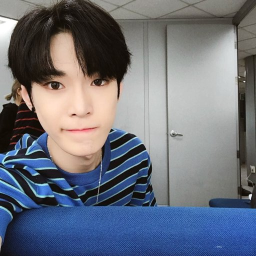 Doyoung (NCT)   Wiki   •K-Pop• Amino